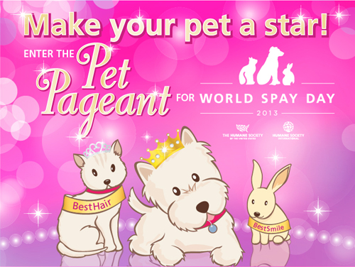 human society pet pageant